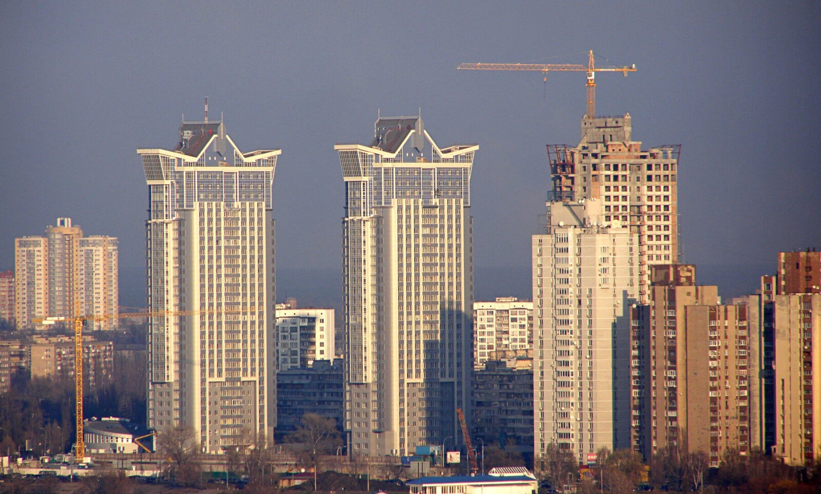Серебряный Бриз. Фото:   http://forum.domik.ua/