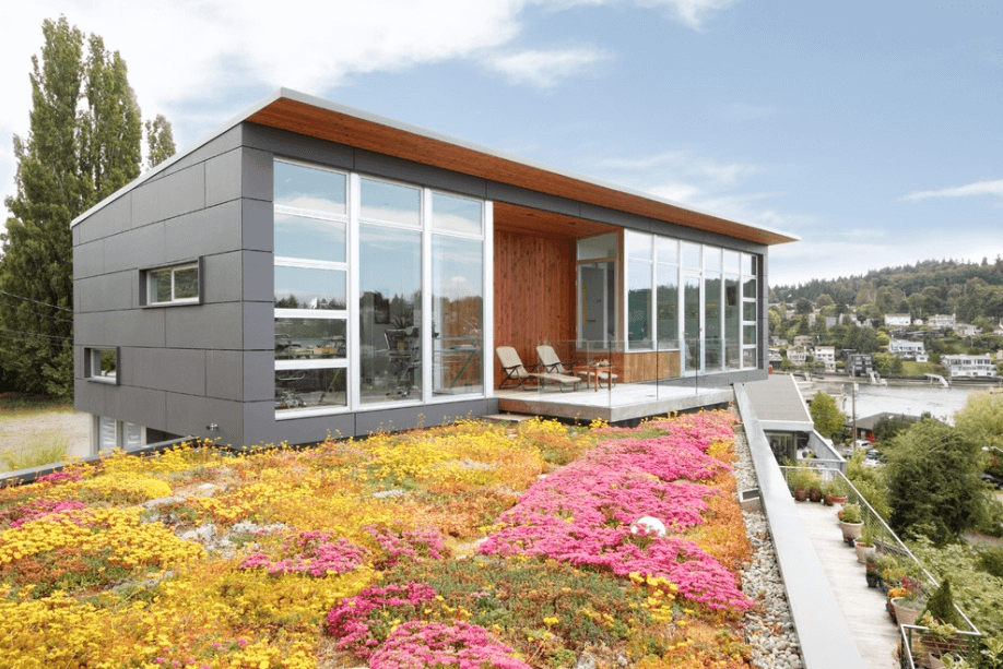 roof-garden-modern-home